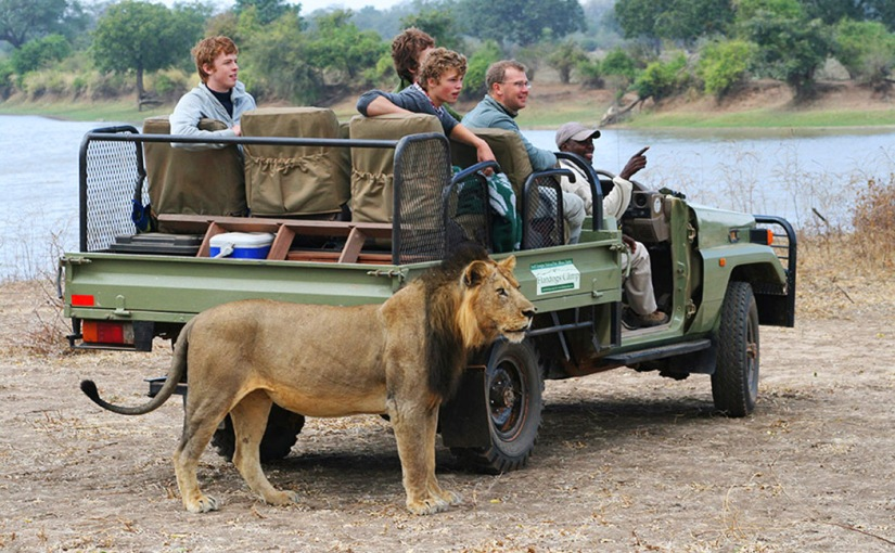 The safari pack list: top tips for a comfortable stay