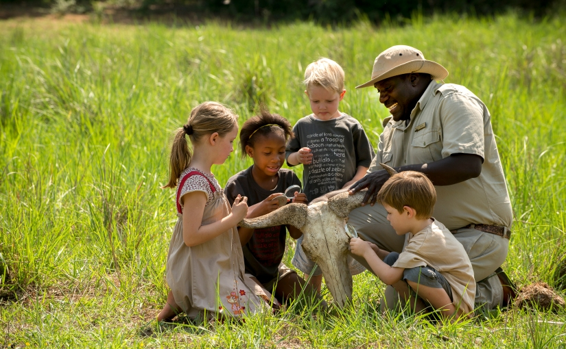 What Age Can Children Go On Safari?